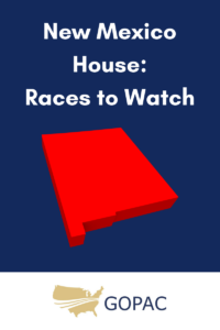 New Mexico Races to Watch