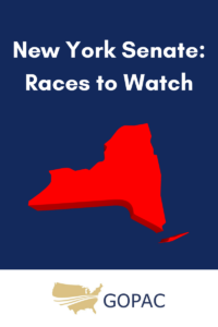 new-york-senate-races-to-watch_blog